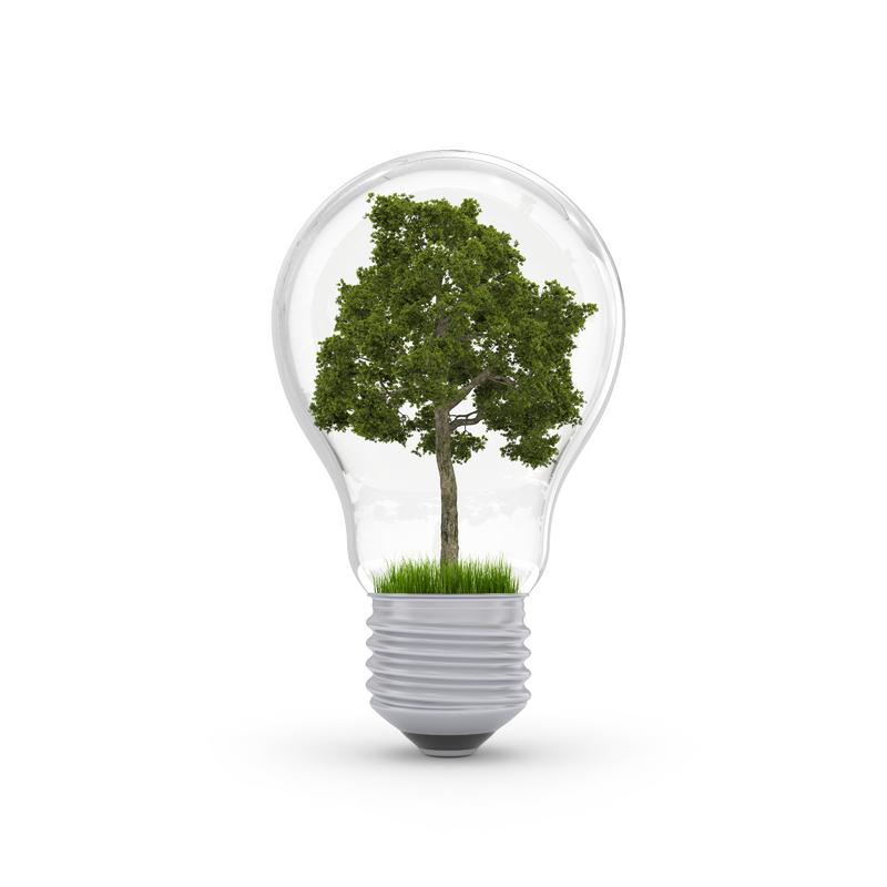 Environment_Tree